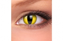 2245de7a2249b Anvisa proíbe lentes de contato coloridas usadas em fantasias